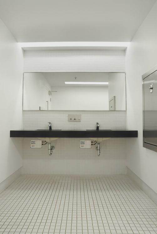 Chronomites under sink_0