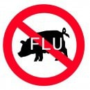 Is swine flu a sanitary problem?