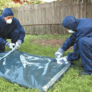 ASEA releases asbestos containment and stabilisation report